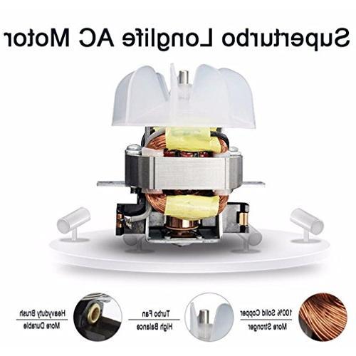 REBUNE 3000W Anion Hair Ionic Fast Dryer Motor Use Hair Drier fragrance